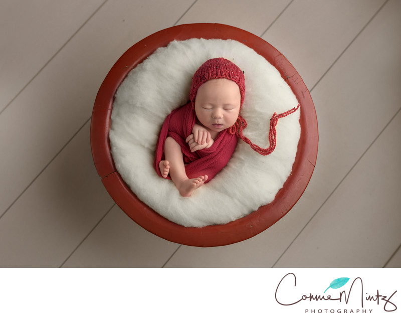 Snow Baby in Red Bowl-Porltand OR