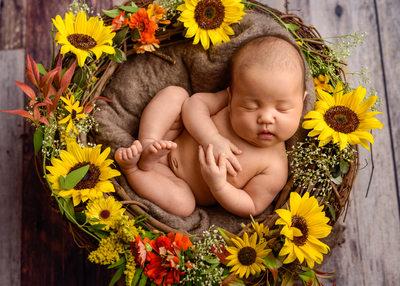 Portland Newborn and Sunflowers