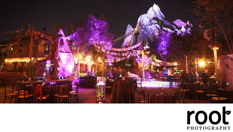 Animal Kingdom Wedding Reception