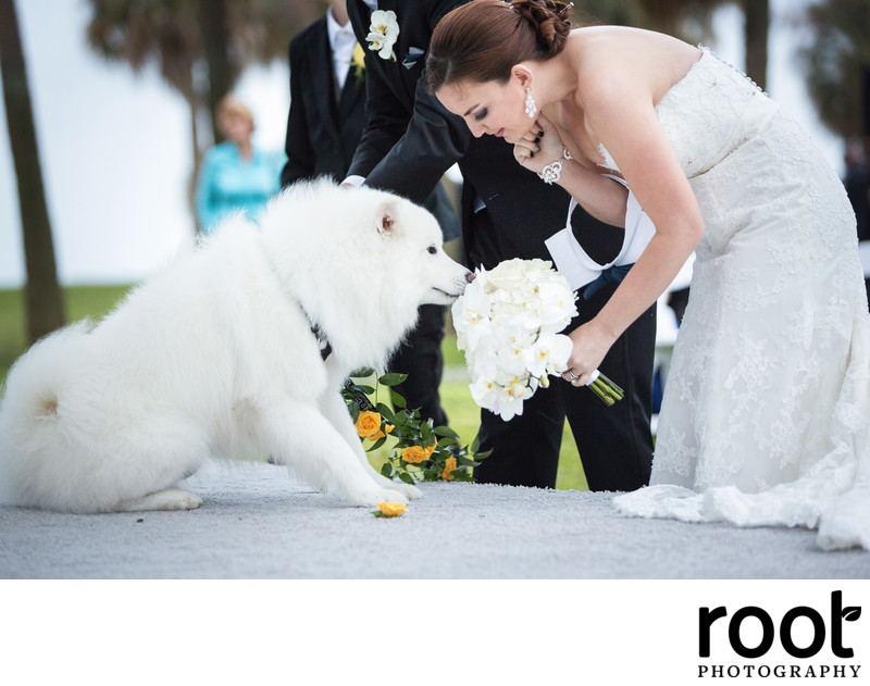 The Birchwood Wedding in St. Petersburg, FL