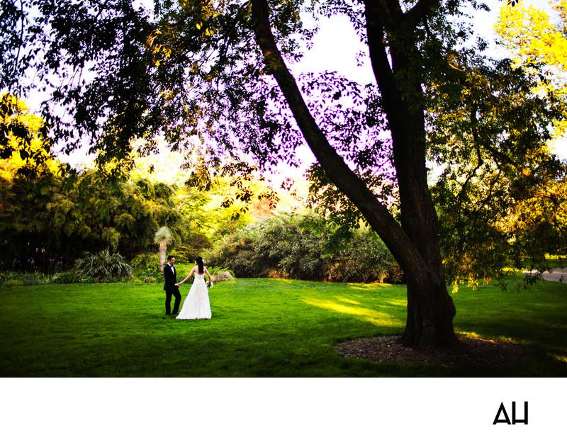 Brooklyn Botanic Garden Wedding Photography