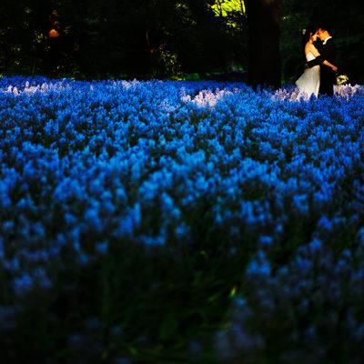 Brooklyn Botanic Garden Wedding Photos
