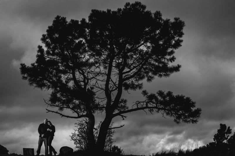 Best Flagstaff Engagement Photos - Phoenix Wedding Photographers - Ben and Kelly Photography