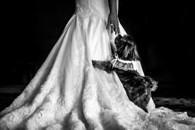 Best Wedding Photos at the Phoenician in Scottsdale - Scottsdale Wedding Photographers - Ben and Kelly Photography