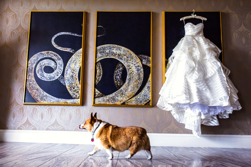 Wedding Ceremonies at the Phoenician in Scottsdale Arizona - Best Scottsdale Wedding Photographers - Ben and Kelly Photography