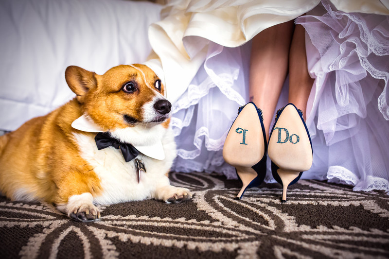 The Bride's Heels at the Phoenician in Scottsdale Arizona - Best Scottsdale Wedding Photographers- Ben and Kelly Photography