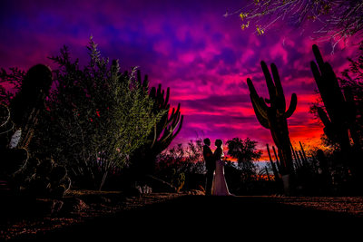 Desert botanical gardens wedding photography Phoenix