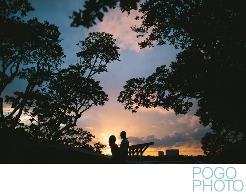 Sunset silhouette portrait, MacArthur Beach State Park