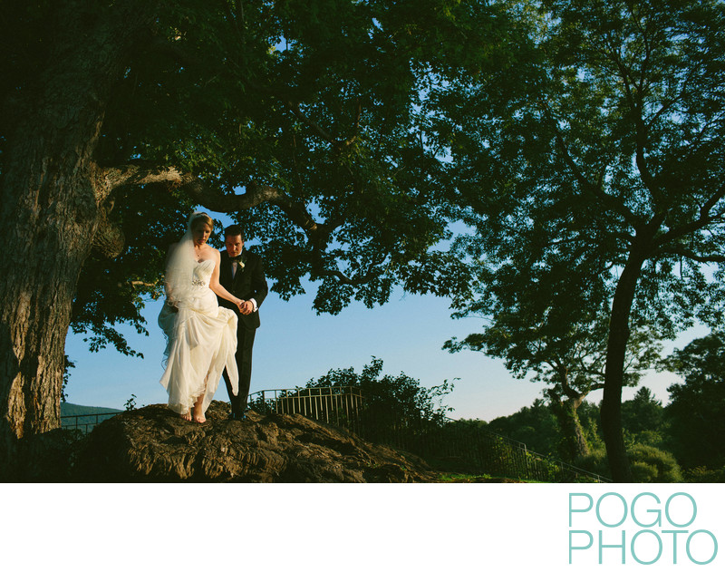 Painterly Maxfield Parrish Inspired Wedding Portrait