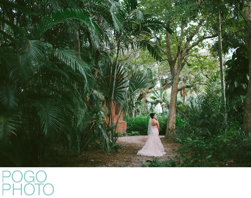 Bridal portraits in the Jungle, West Palm Beach