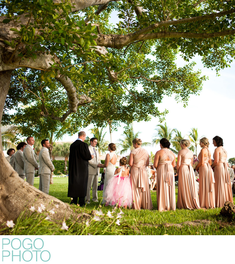 Tropical Wedding Under Banyan Tree with Peach Dresses