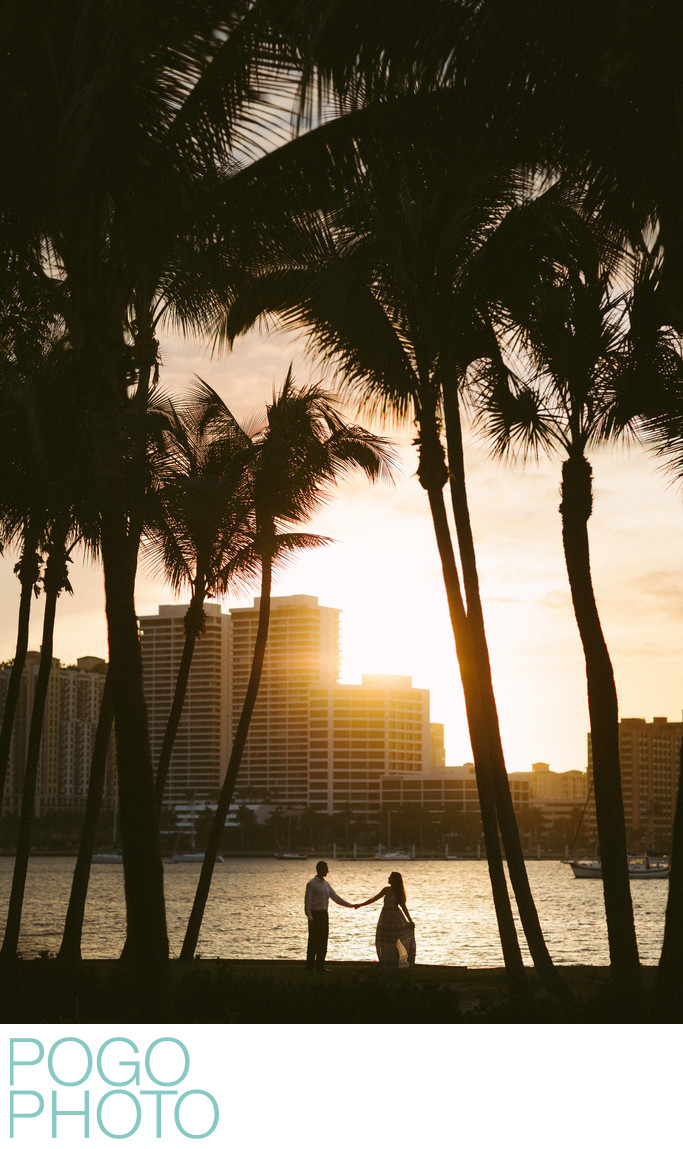 Romantic Sunset Palm Tree Photo at Whitehall Palm Beach