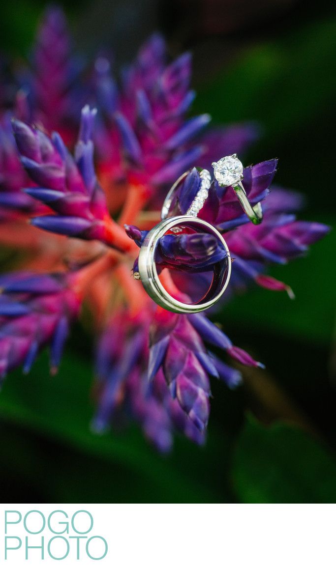 Tropical Wedding Ring Detail Photo with Blue Bromeliads