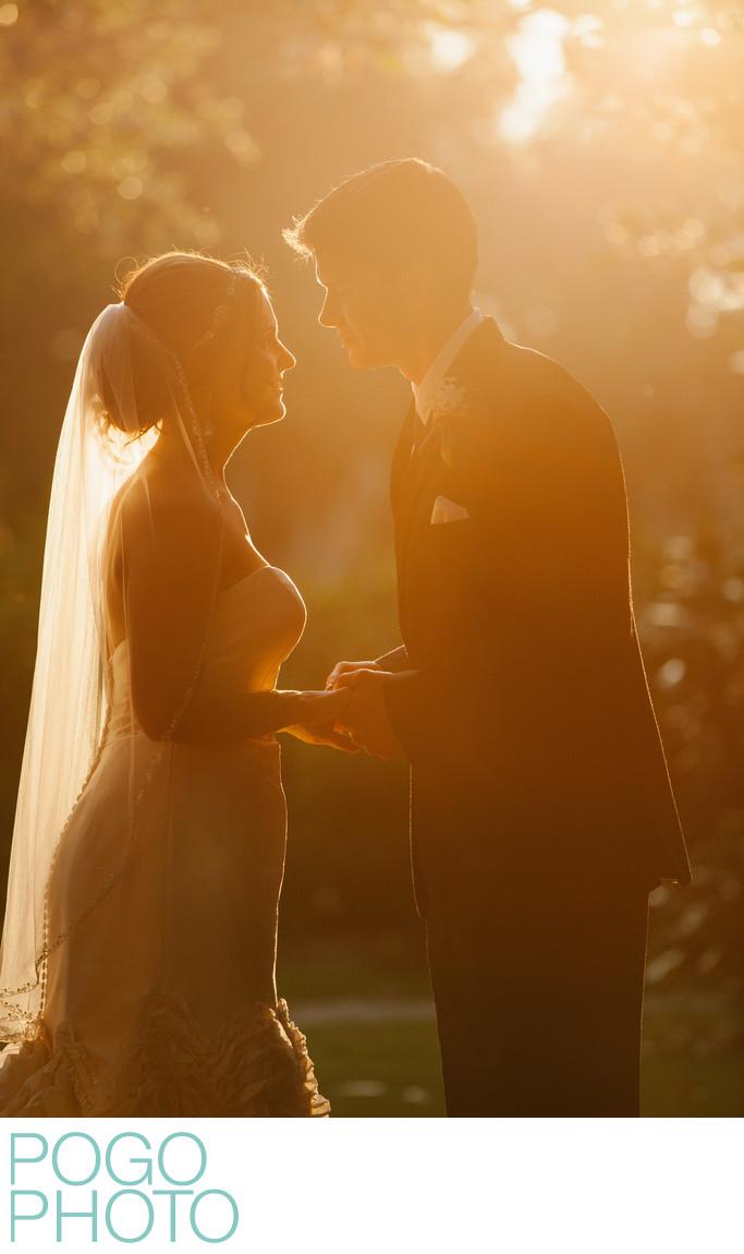 Fairytale Wedding Portrait in Glowing Charleston Sunset