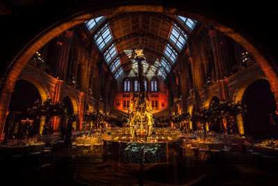Wedding Reception at the Natural History Museum