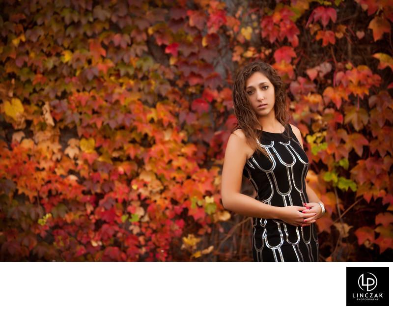 fall background photo