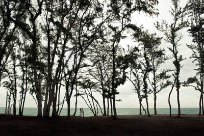 Waimanalo Beach Wedding - Sherwood Forest, Oahu, HI