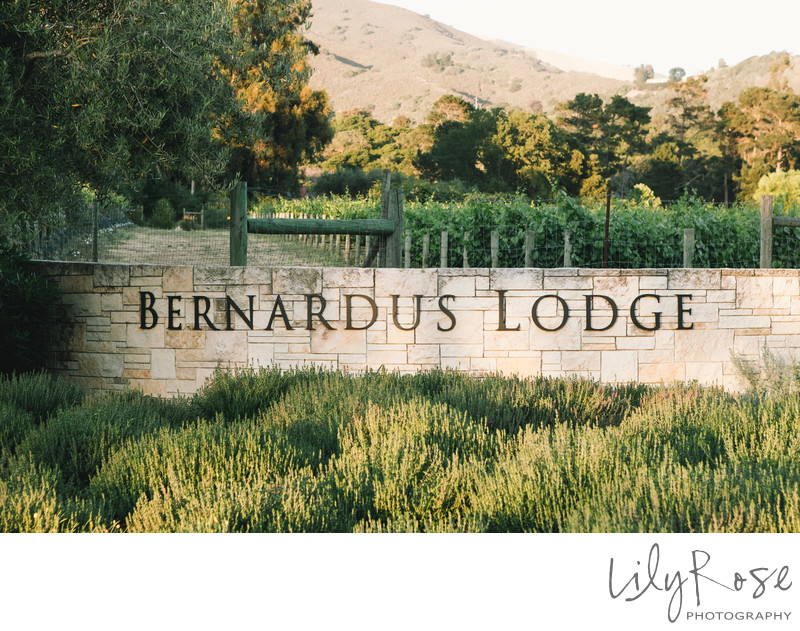 Bernardus Lodge and Spa Wedding Photographers