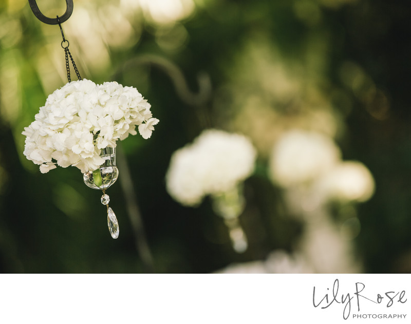 Grand Island Mansion Wedding Photographers
