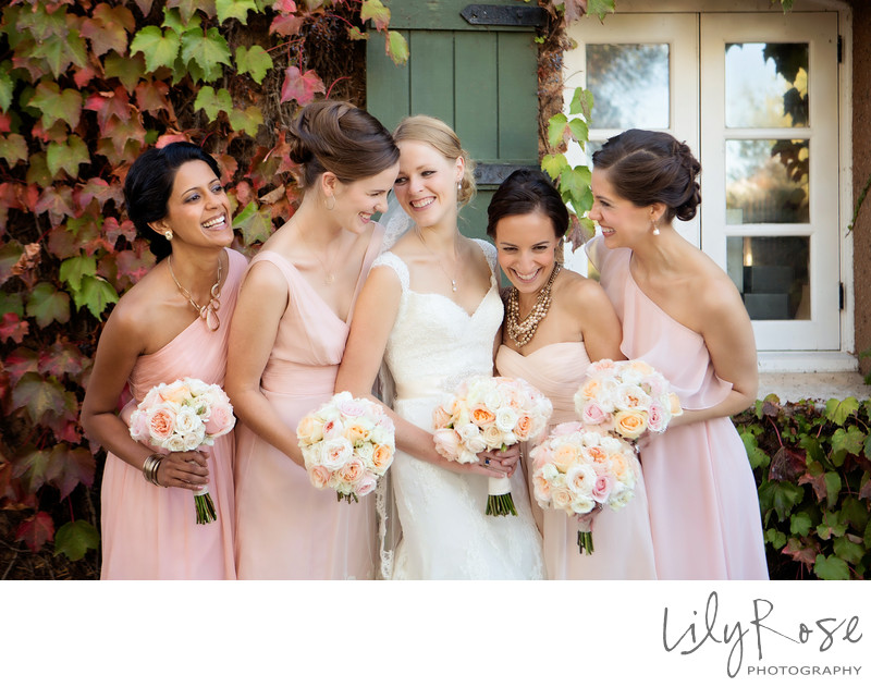 Top Wedding Photographer in Sonoma