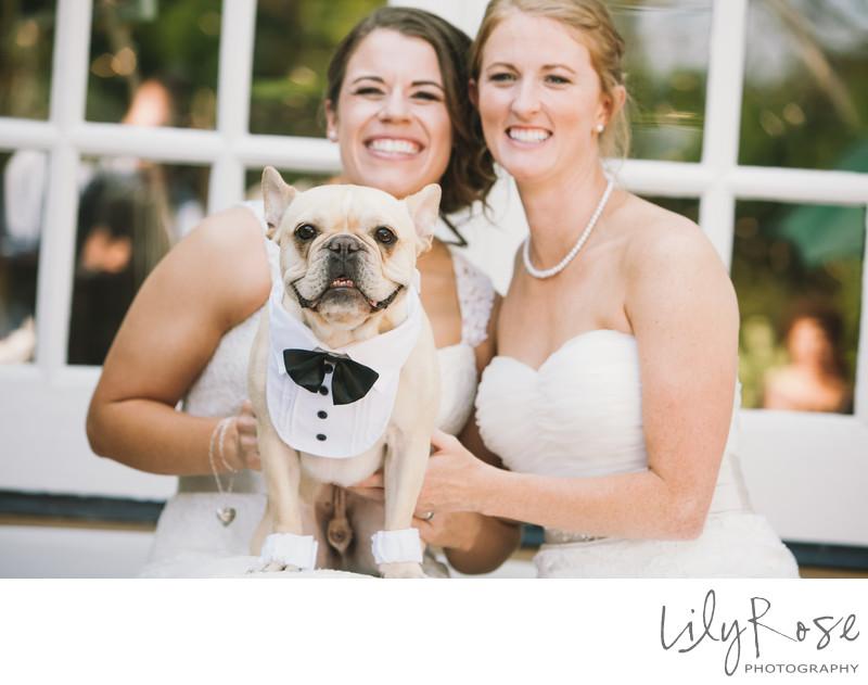 Same Sex Wedding in Napa