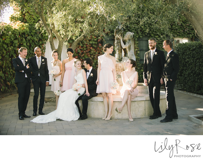 Sonoma Wedding Pictures Viansa