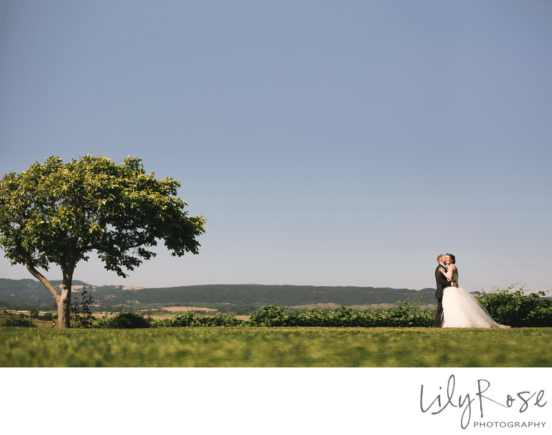 Wedding Photographer in Sonoma Viansa