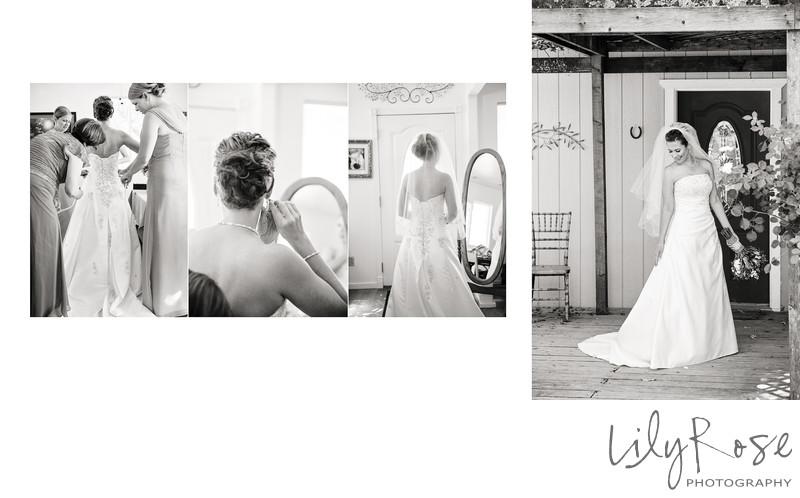 Sonoma Wedding Photography Outdoor Wedding