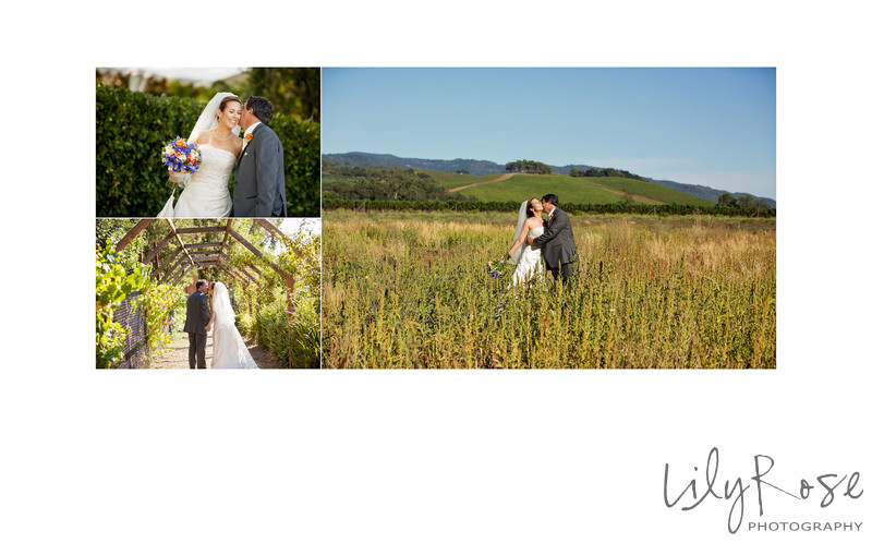 Best Sonoma Wedding Photographers Kenwood