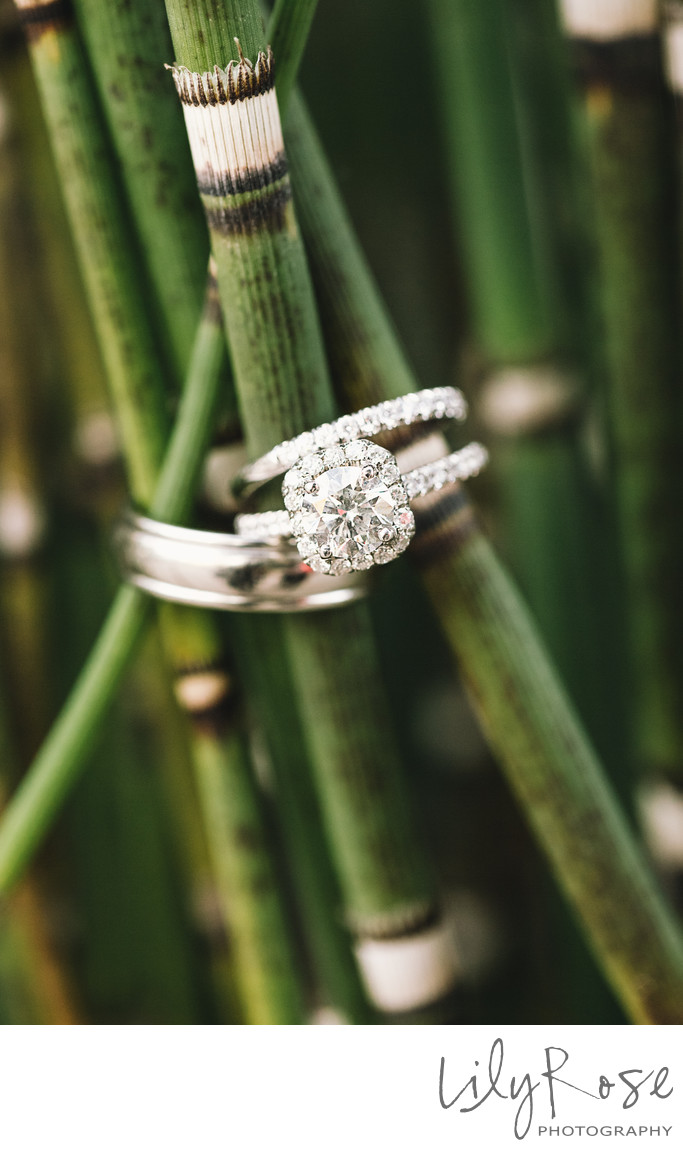 Cornerstone Sonoma Wedding Photography