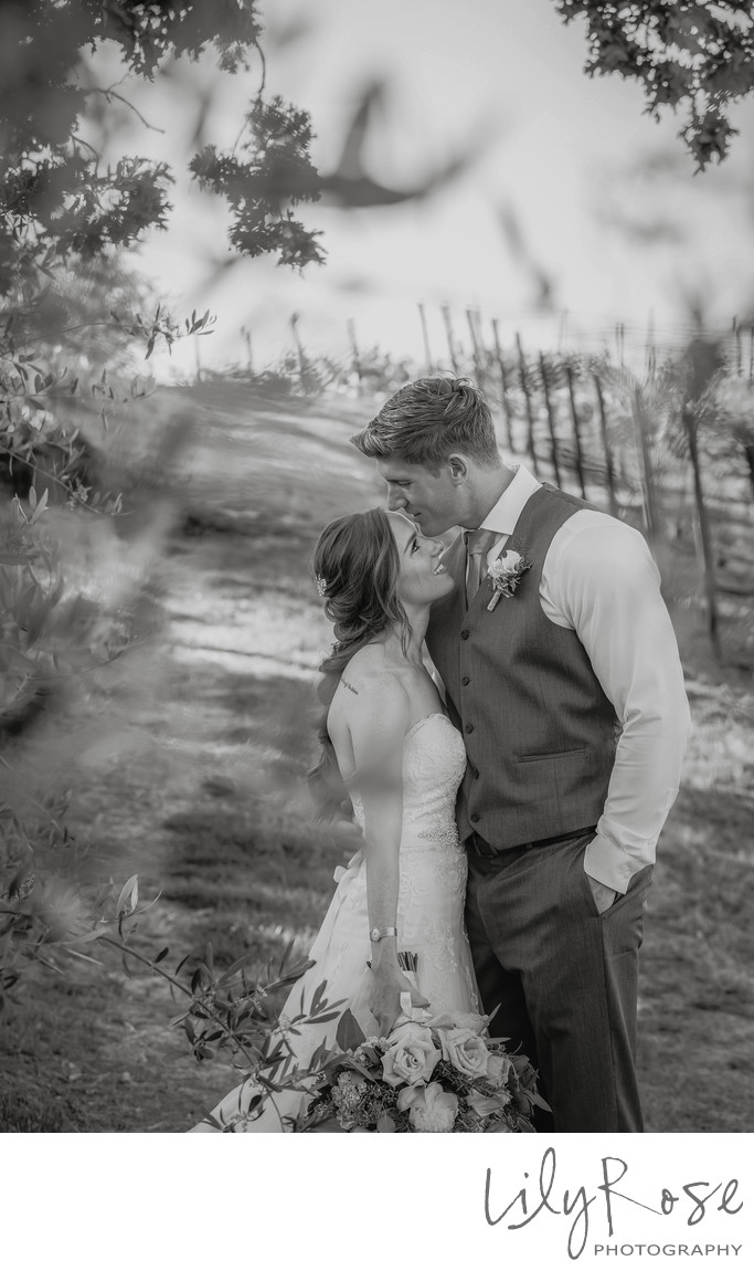 Wedding Photos at Meritage Resort and Spa