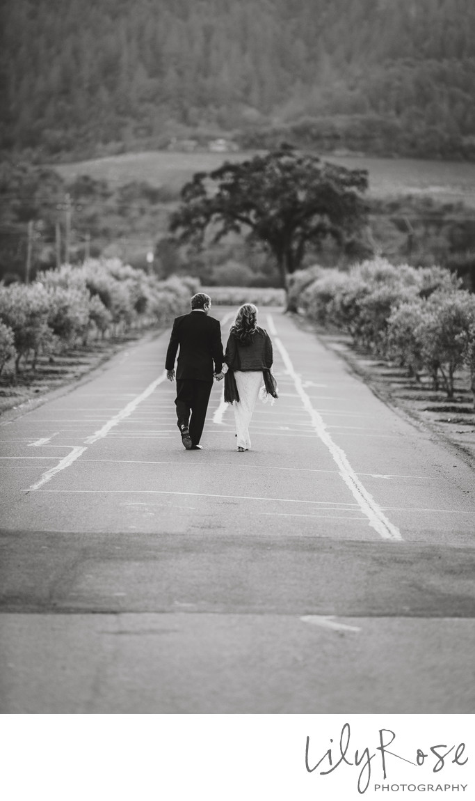 Cardinale Winery Elopement