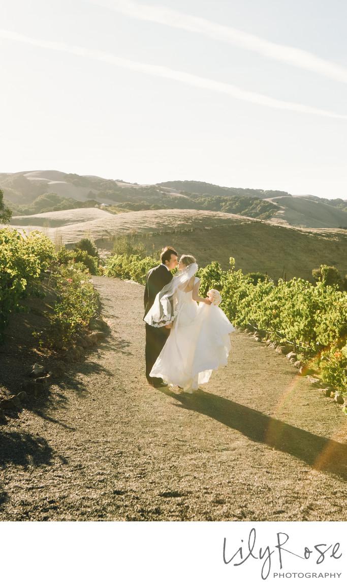 Sonoma Wedding Photographer Viansa