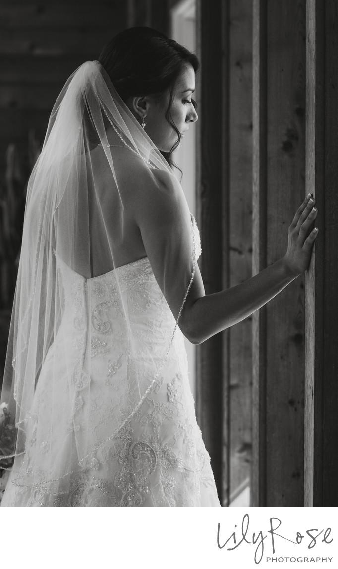 Sonoma Outdoor Wedding Bride
