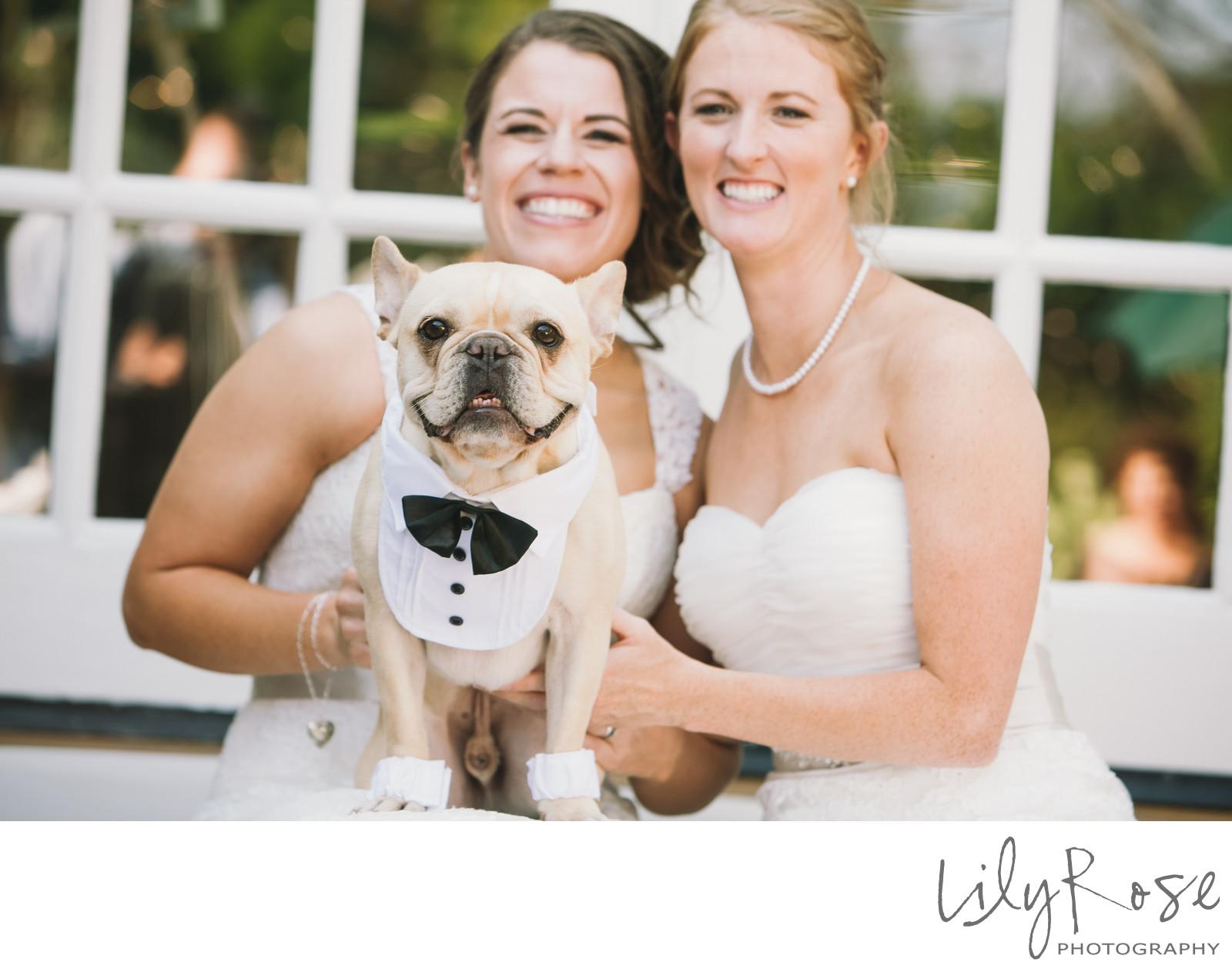 Wedding Sex Pictures