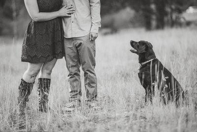 Tahoe Engagement Session Sonoma Wedding Photographer