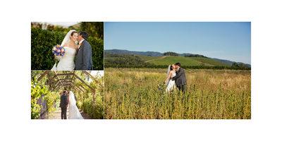 Best Sonoma Wedding Photographers Kenwood