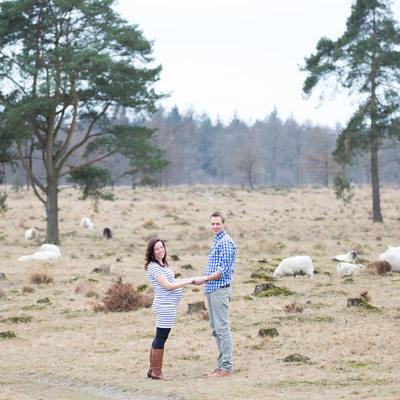 Foto's met Schaapskudde Kale Duinen