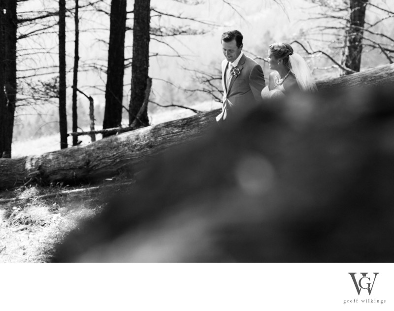Bride + Groom Walking Together In The Wood Banff