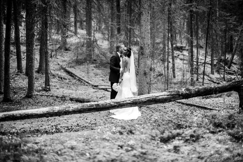 Banff Wedding Photographs Bride + Groom In Woods