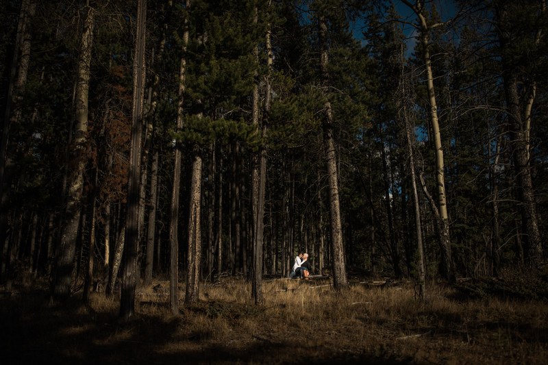Banff National Park Engagement Couple In Wooded Forest