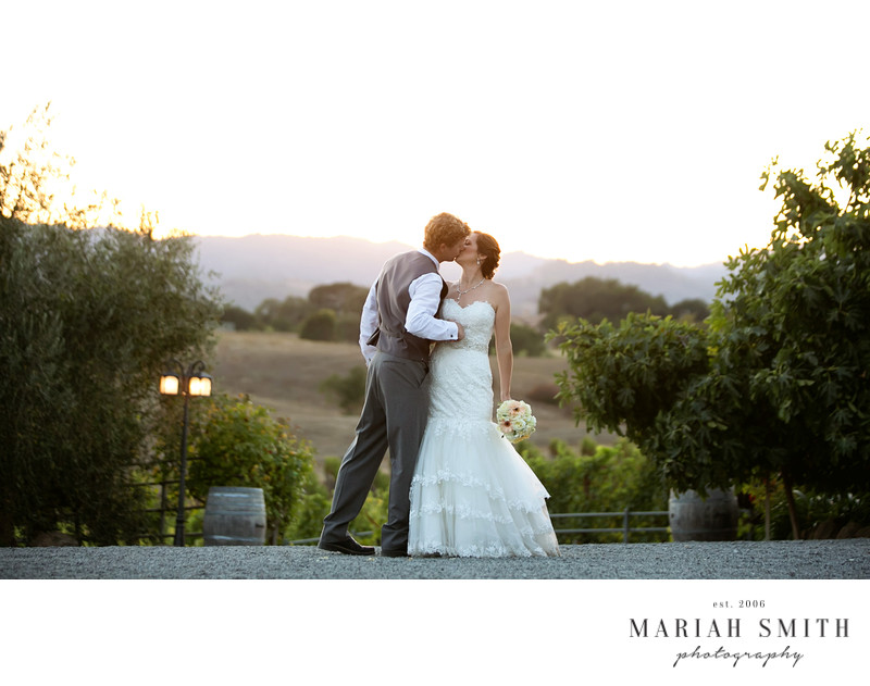 Vineyard Wedding Photography in Healdsburg