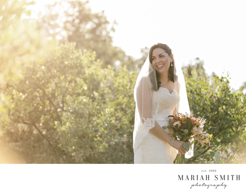 Santa Rosa Winery Wedding Photographers
