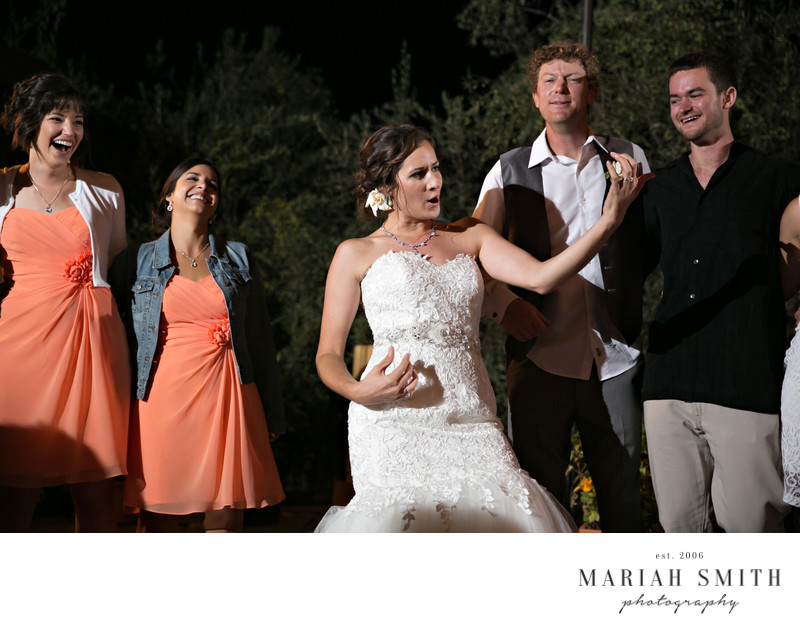 Healdsburg wedding reception photography