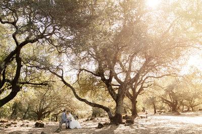 Paradise Ridge Wedding Photographer