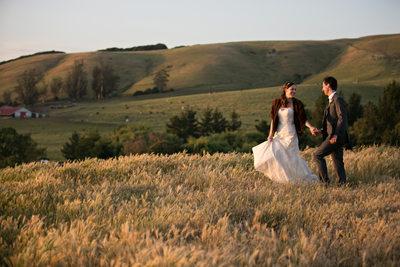 Olympia's Valley Estate Wedding Photographers