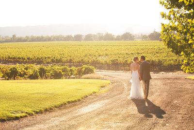 Healdsburg Vineyard Best Wedding Photography
