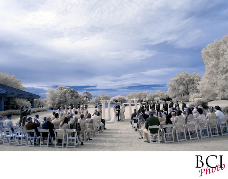 top wedding photographers in broward county