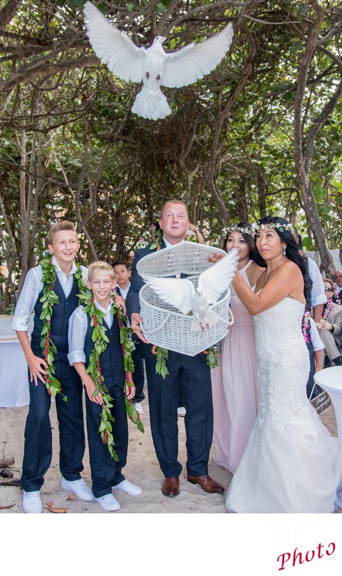 Wedding Dove Release