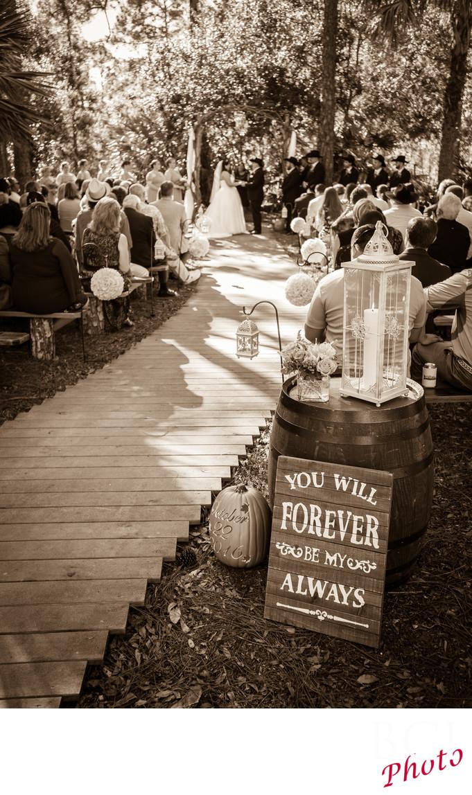 Areas best wedding photographers